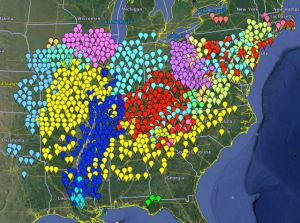 A map showing the different Broods of 17 and 13 year cicadas i the eastern USA. Brook V are the purple dots. Each brood is on a different cycle of appearance. This map come from the cicadamania webpage which is chock full of info about these cicads including local reports of spottings.